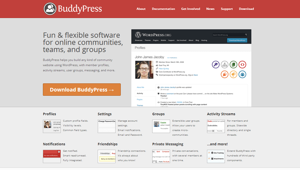 BuddyPress - Online Community