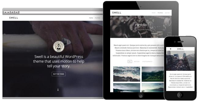 Swell: A Stunning Video WordPress Theme | ThemeTrust